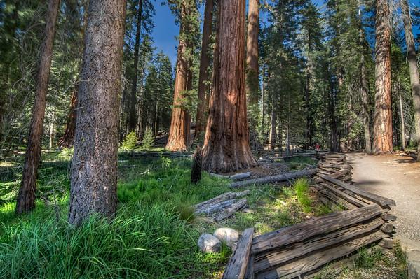 Yosemite_2014